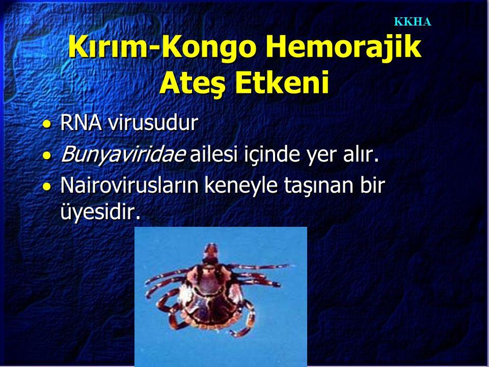 KKHA Kırım-Kongo Hemorajik Ateş Etkeni  RNA virusudur  Bunyaviridae ailesi içinde yer alır.  Nairovirusların keneyle taşınan bir üyesidir.  RNA vi