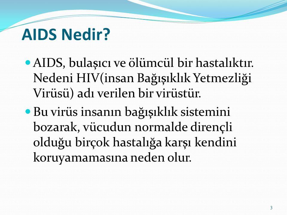 AIDS Nedir? AIDS, bulaşıcı ve ölümcül bir hastalıktır. Nedeni HIV(insan Bağışıklık Yetmezliği Virüsü) adı verilen bir virüstür. Bu virüs insanın bağış