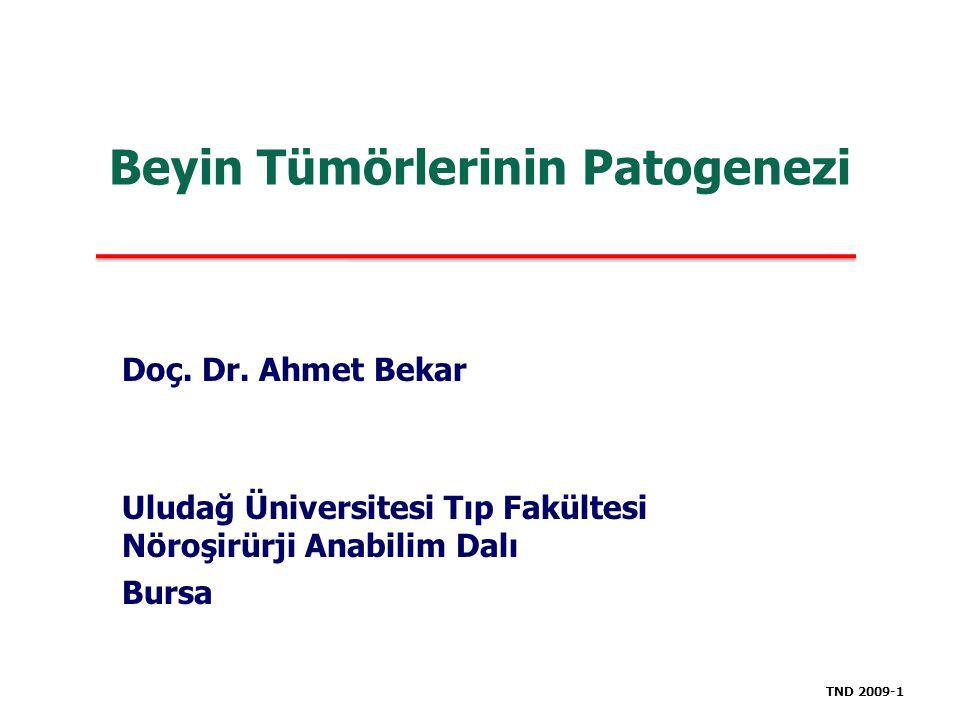 Beyin Tümörlerinin Patogenezi Doç. Dr. Ahmet Bekar Uludağ Üniversitesi Tıp Fakültesi Nöroşirürji Anabilim Dalı Bursa TND 2009-1