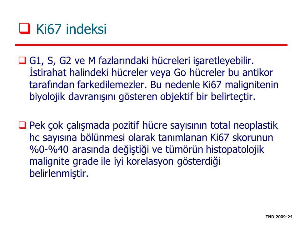  Ki67 indeksi  G1, S, G2 ve M fazlarındaki hücreleri işaretleyebilir. İstirahat halindeki hücreler veya Go hücreler bu antikor tarafından farkedilem