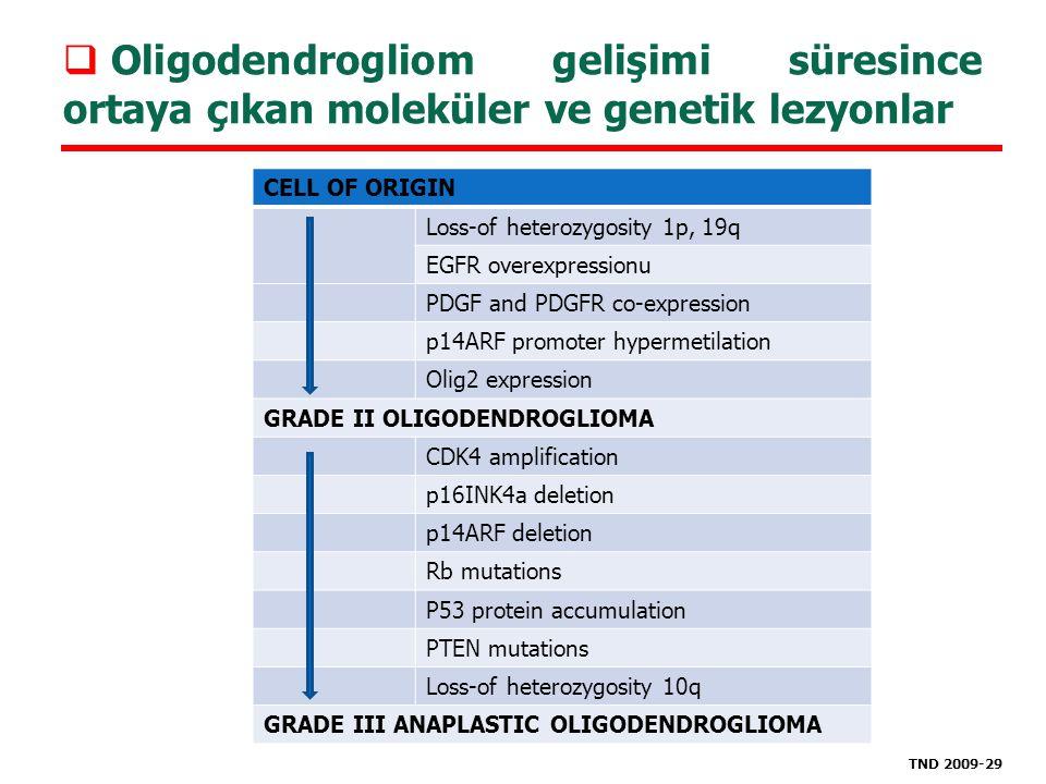  Oligodendrogliom gelişimi süresince ortaya çıkan moleküler ve genetik lezyonlar CELL OF ORIGIN Loss-of heterozygosity 1p, 19q EGFR overexpressionu P