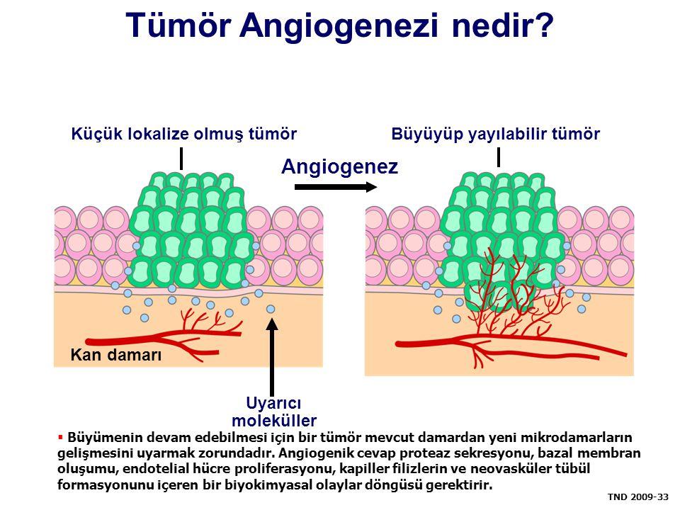 Tümör Angiogenezi nedir? Kan damarı Büyüyüp yayılabilir tümörKüçük lokalize olmuş tümör Uyarıcı moleküller Angiogenez  Büyümenin devam edebilmesi içi