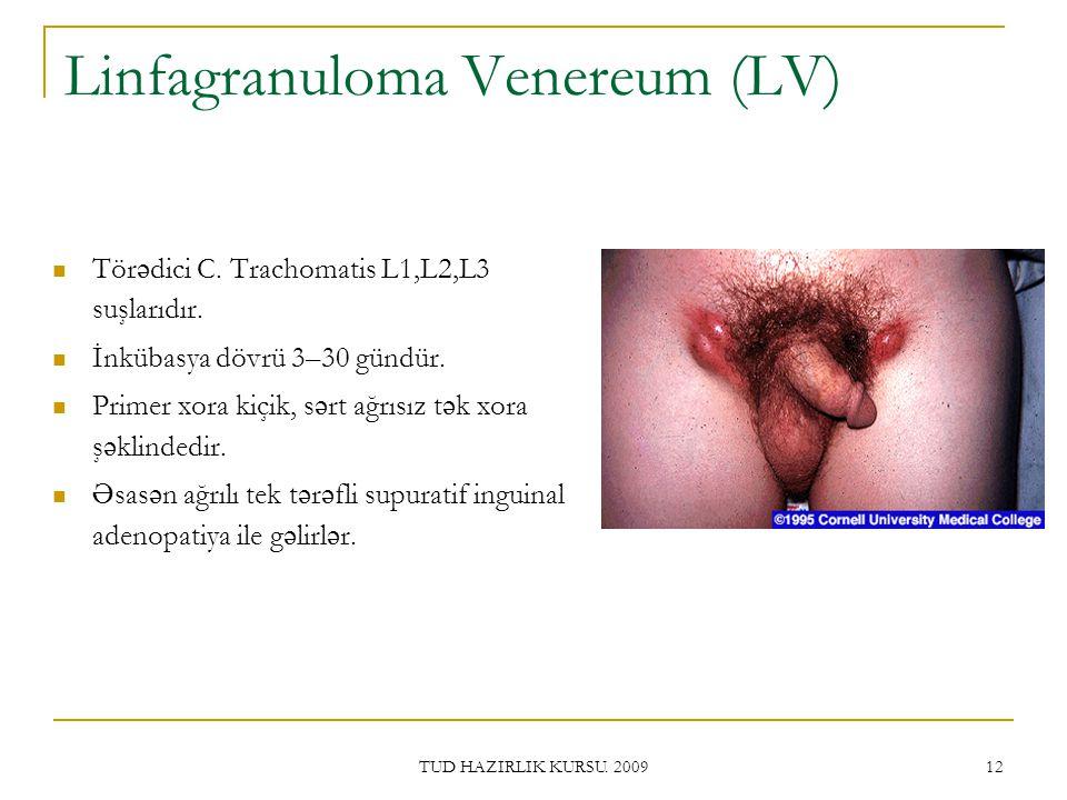 TUD HAZIRLIK KURSU.2009 12 Linfagranuloma Venereum (LV) Tör ə dici C.