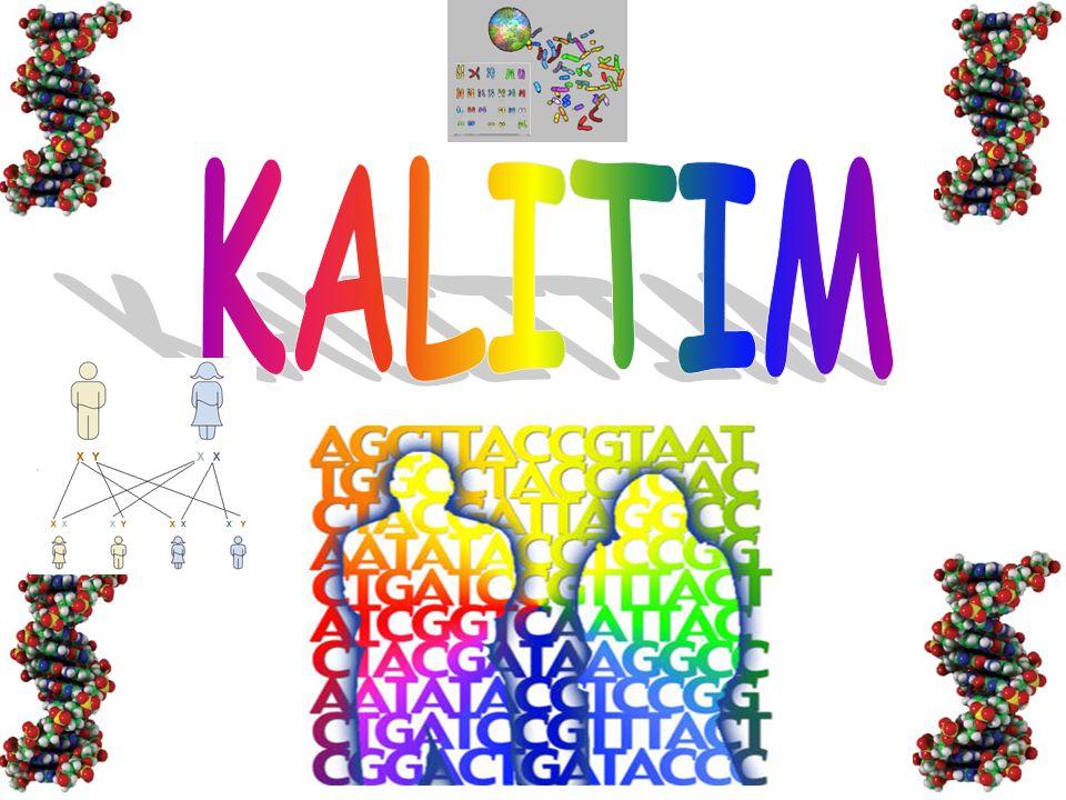 Anne ve babaya ait karakterlerin oğul döllere geçişini, anne ve baba karakterlerinin oğul döllere olan benzerliğini ve bu benzerliğin ortaya çıkma olasılığını inceleyen bilim dalına genetik (KALITIM) denir.