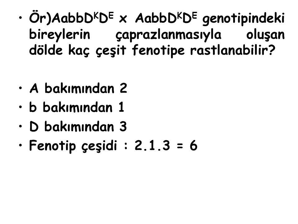 Ör)AabbD K D E x AabbD K D E genotipindeki bireylerin çaprazlanmasıyla oluşan dölde kaç çeşit fenotipe rastlanabilir? A bakımından 2 b bakımından 1 D
