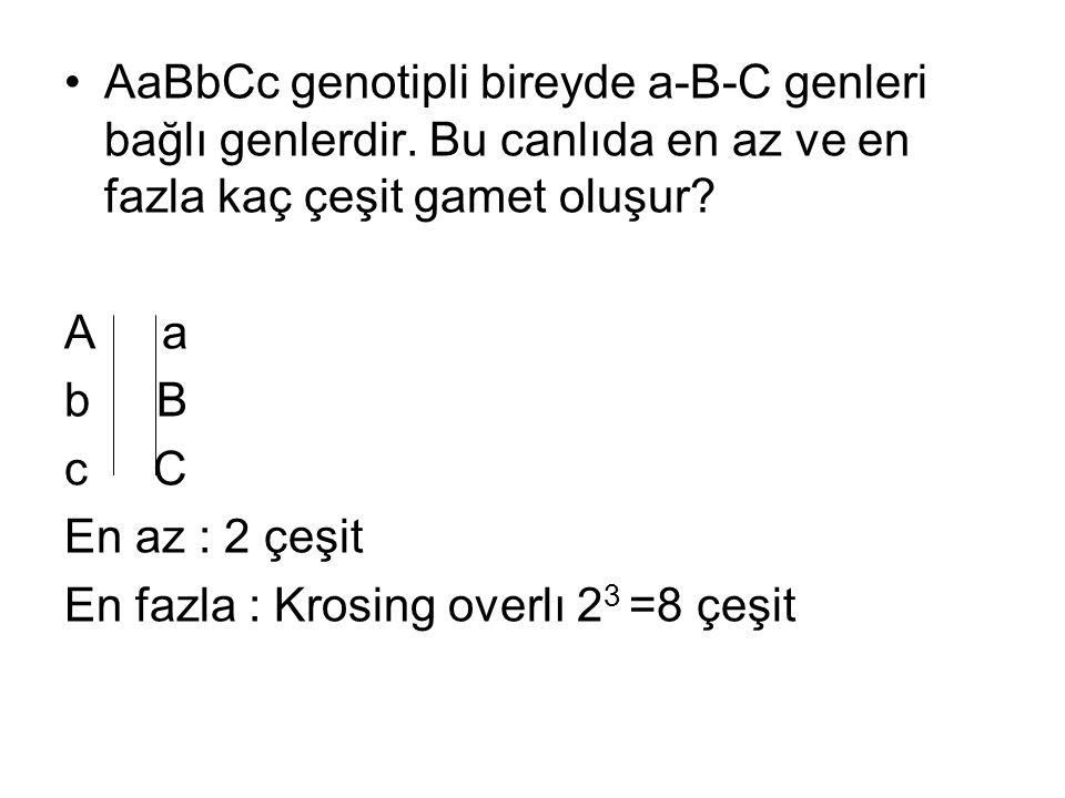 AaBbCc genotipli bireyde a-B-C genleri bağlı genlerdir. Bu canlıda en az ve en fazla kaç çeşit gamet oluşur? A a b B c C En az : 2 çeşit En fazla : Kr