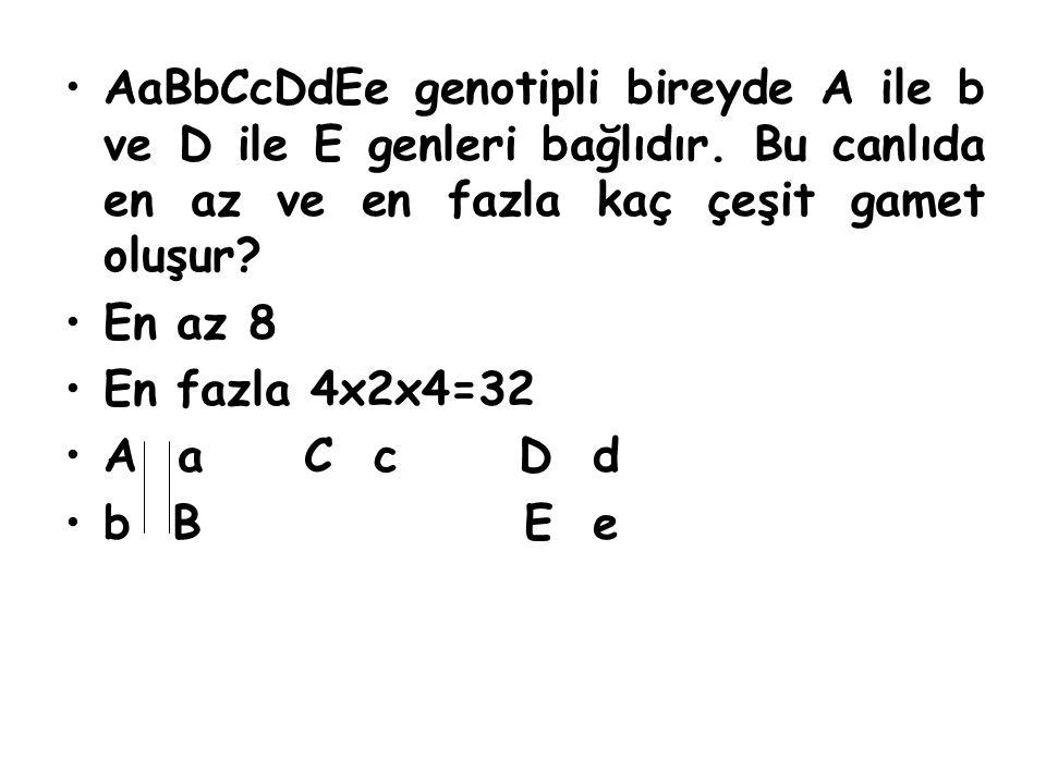 AaBbCcDdEe genotipli bireyde A ile b ve D ile E genleri bağlıdır. Bu canlıda en az ve en fazla kaç çeşit gamet oluşur? En az 8 En fazla 4x2x4=32 A a C