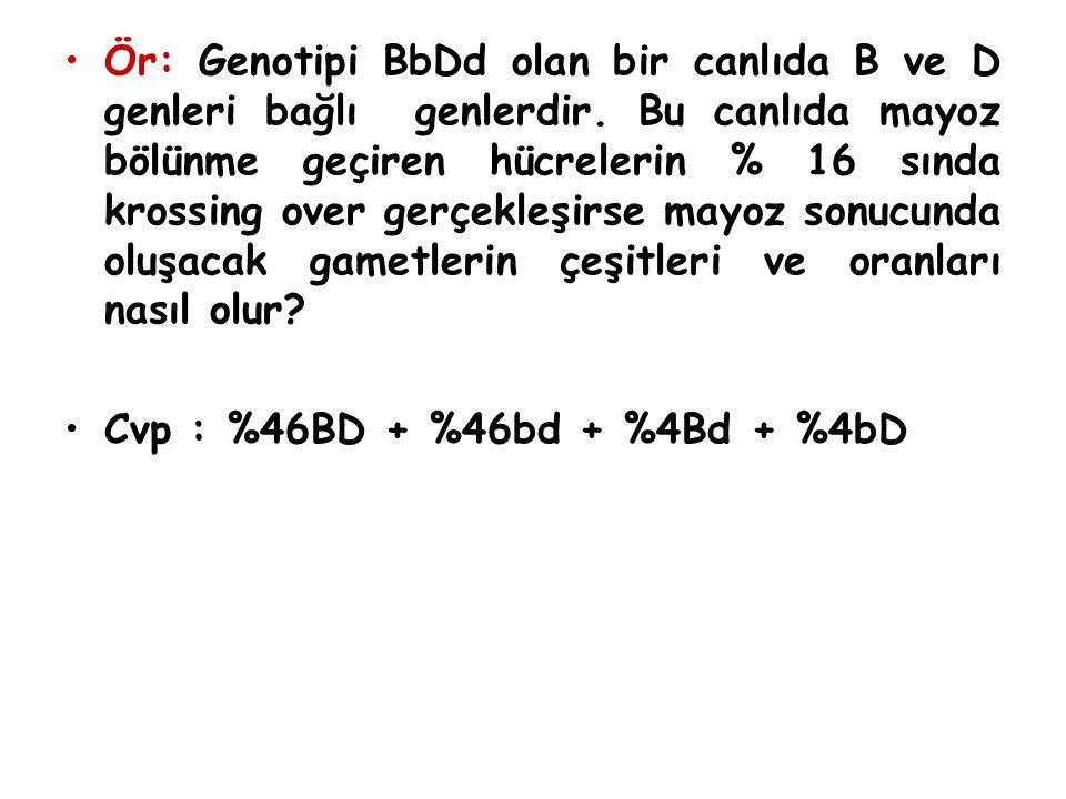 Ör: Genotipi BbDd olan bir canlıda B ve D genleri bağlı genlerdir. Bu canlıda mayoz bölünme geçiren hücrelerin % 16 sında krossing over gerçekleşirse