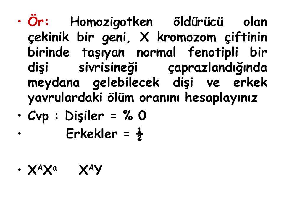 Ör: Homozigotken öldürücü olan çekinik bir geni, X kromozom çiftinin birinde taşıyan normal fenotipli bir dişi sivrisineği çaprazlandığında meydana ge