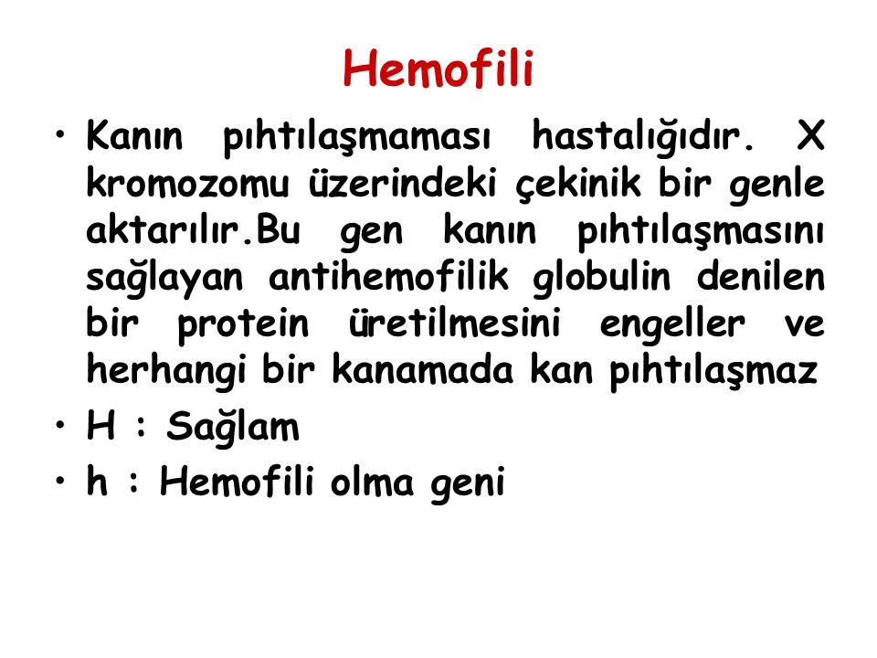 Hemofili Kanın pıhtılaşmaması hastalığıdır. X kromozomu üzerindeki çekinik bir genle aktarılır.Bu gen kanın pıhtılaşmasını sağlayan antihemofilik glob