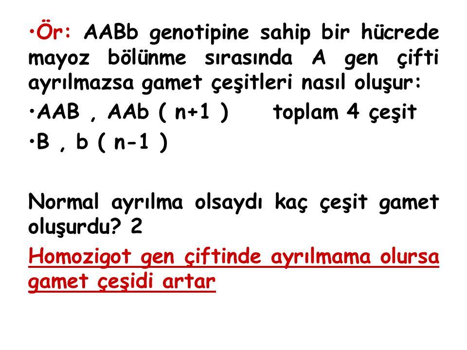 Ör: AABb genotipine sahip bir hücrede mayoz bölünme sırasında A gen çifti ayrılmazsa gamet çeşitleri nasıl oluşur: AAB, AAb ( n+1 ) toplam 4 çeşit B,