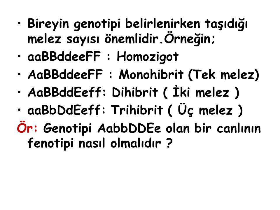 Bireyin genotipi belirlenirken taşıdığı melez sayısı önemlidir.Örneğin; aaBBddeeFF : Homozigot AaBBddeeFF : Monohibrit (Tek melez) AaBBddEeff: Dihibri