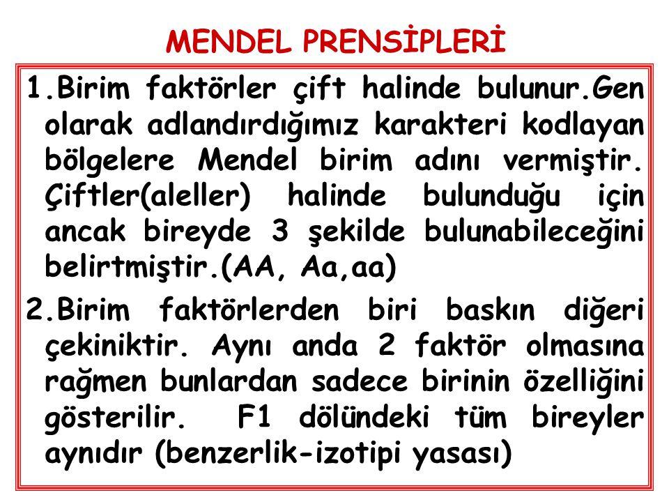 MENDEL PRENSİPLERİ 1.Birim faktörler çift halinde bulunur.Gen olarak adlandırdığımız karakteri kodlayan bölgelere Mendel birim adını vermiştir. Çiftle