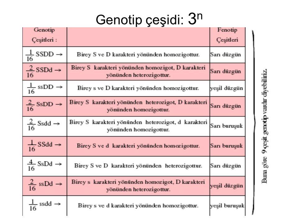 Genotip çeşidi: 3 n