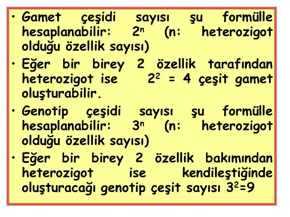 Gamet çeşidi sayısı şu formülle hesaplanabilir: 2 n (n: heterozigot olduğu özellik sayısı) Eğer bir birey 2 özellik tarafından heterozigot ise 2 2 = 4