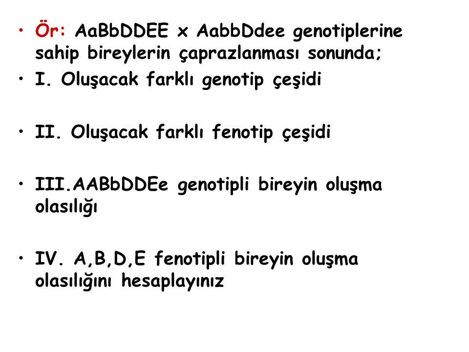 Ör: AaBbDDEE x AabbDdee genotiplerine sahip bireylerin çaprazlanması sonunda; I. Oluşacak farklı genotip çeşidi II. Oluşacak farklı fenotip çeşidi III