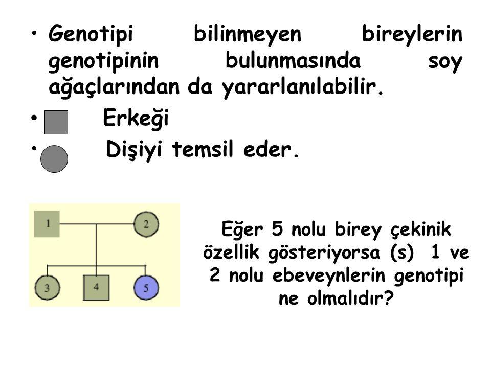 Genotipi bilinmeyen bireylerin genotipinin bulunmasında soy ağaçlarından da yararlanılabilir. Erkeği Dişiyi temsil eder. Eğer 5 nolu birey çekinik öze
