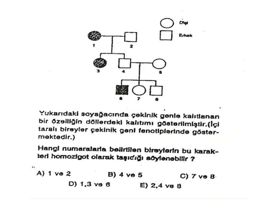 Mendel kanununa uymayan örnekler: 1.