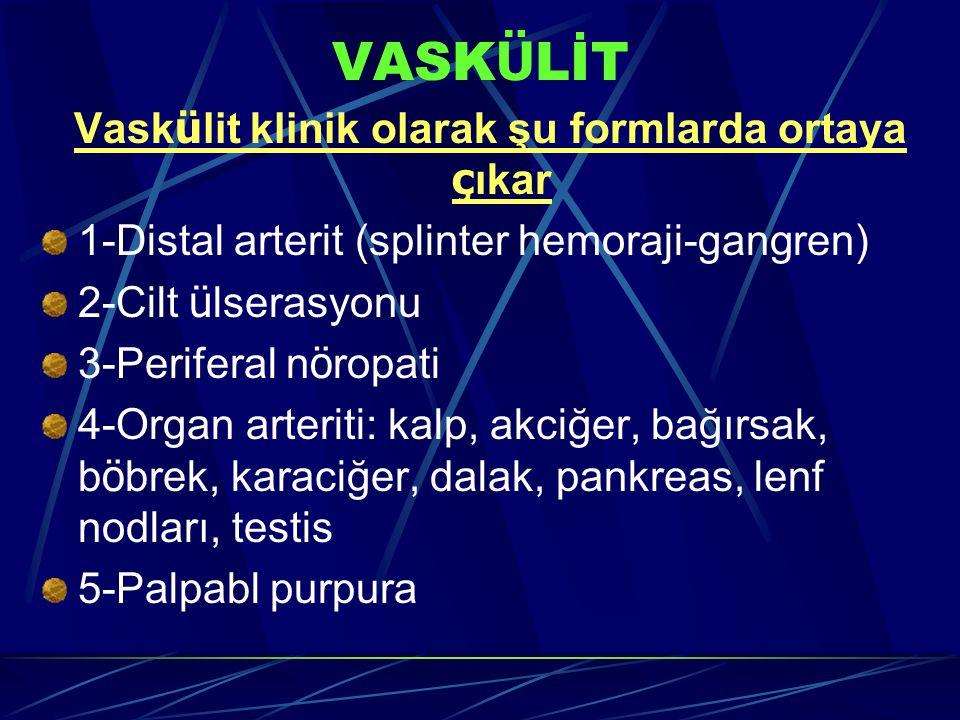 VASK Ü LİT Vask ü lit klinik olarak şu formlarda ortaya ç ıkar 1-Distal arterit (splinter hemoraji-gangren) 2-Cilt ü lserasyonu 3-Periferal n ö ropati 4-Organ arteriti: kalp, akciğer, bağırsak, b ö brek, karaciğer, dalak, pankreas, lenf nodları, testis 5-Palpabl purpura