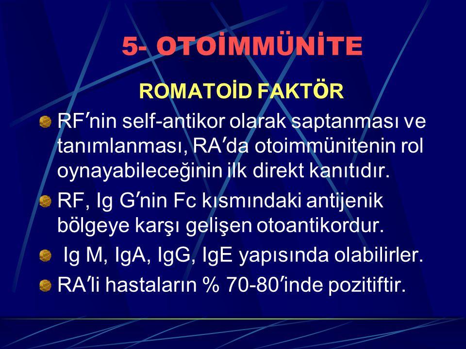 5- OTOİMM Ü NİTE ROMATOİD FAKT Ö R RF ' nin self-antikor olarak saptanması ve tanımlanması, RA ' da otoimm ü nitenin rol oynayabileceğinin ilk direkt kanıtıdır.