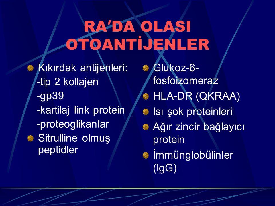 RA ' DA OLASI OTOANTİJENLER Kıkırdak antijenleri: -tip 2 kollajen -gp39 -kartilaj link protein -proteoglikanlar Sitrulline olmuş peptidler Glukoz-6- fosfoizomeraz HLA-DR (QKRAA) Isı şok proteinleri Ağır zincir bağlayıcı protein İmm ü nglob ü linler (IgG)