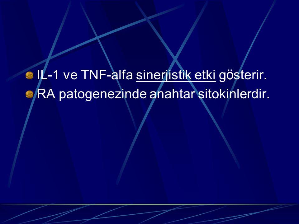 IL-1 ve TNF-alfa sinerjistik etki g ö sterir. RA patogenezinde anahtar sitokinlerdir.
