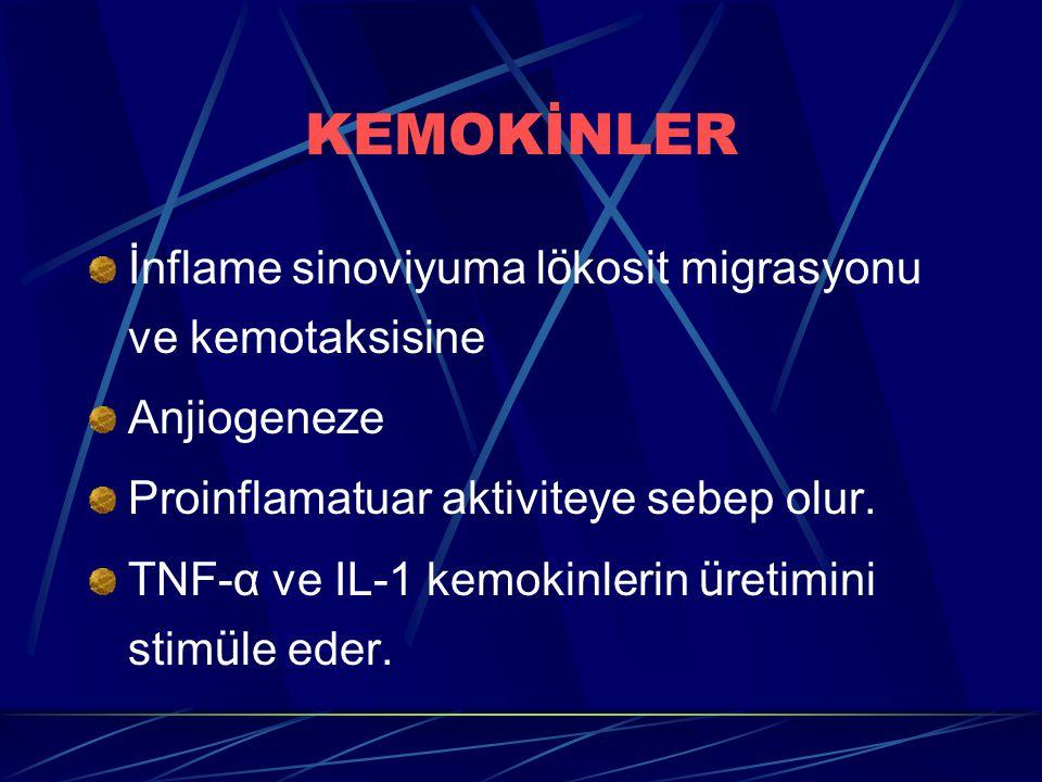 KEMOKİNLER İnflame sinoviyuma l ö kosit migrasyonu ve kemotaksisine Anjiogeneze Proinflamatuar aktiviteye sebep olur. TNF-α ve IL-1 kemokinlerin ü ret