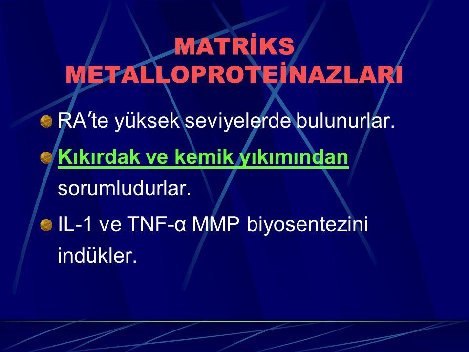 MATRİKS METALLOPROTEİNAZLARI RA ' te y ü ksek seviyelerde bulunurlar. Kıkırdak ve kemik yıkımından sorumludurlar. IL-1 ve TNF-α MMP biyosentezini ind