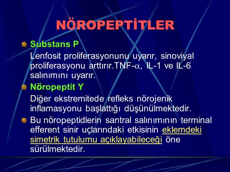 N Ö ROPEPTİTLER Substans P Lenfosit proliferasyonunu uyarır, sinoviyal proliferasyonu arttırır.TNF- , IL-1 ve IL-6 salınımını uyarır. N ö ropeptit Y