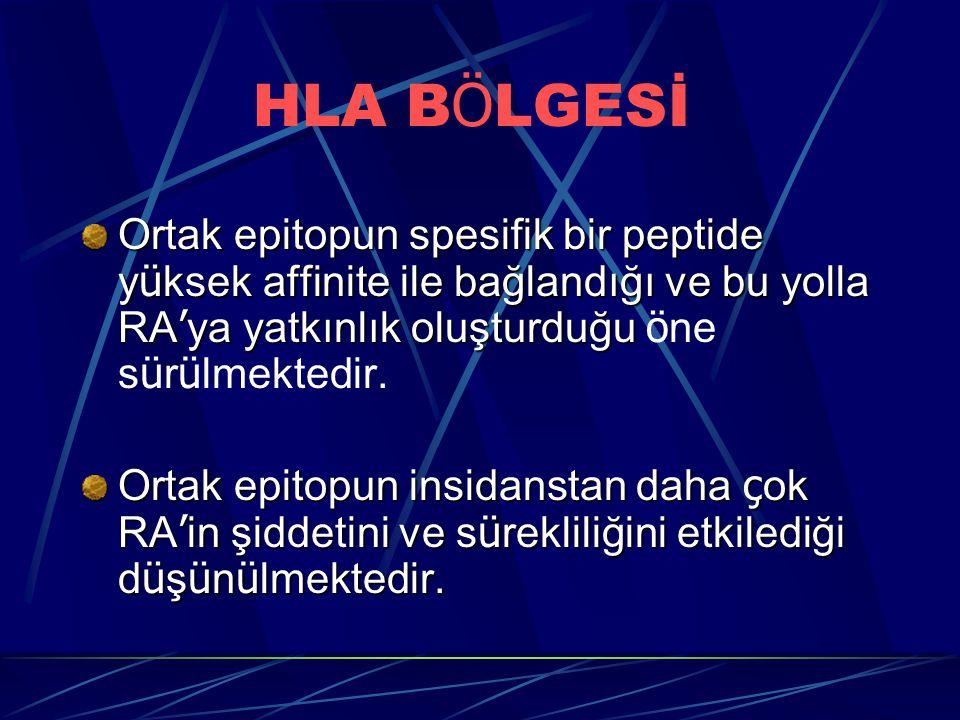 HLA B Ö LGESİ Ortak epitopun spesifik bir peptide y ü ksek affinite ile bağlandığı ve bu yolla RA ' ya yatkınlık oluşturduğu Ortak epitopun spesifik bir peptide y ü ksek affinite ile bağlandığı ve bu yolla RA ' ya yatkınlık oluşturduğu ö ne s ü r ü lmektedir.