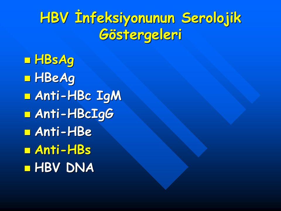 HBV İnfeksiyonunun Serolojik Göstergeleri HBsAg HBsAg HBeAg HBeAg Anti-HBc IgM Anti-HBc IgM Anti-HBcIgG Anti-HBcIgG Anti-HBe Anti-HBe Anti-HBs Anti-HB