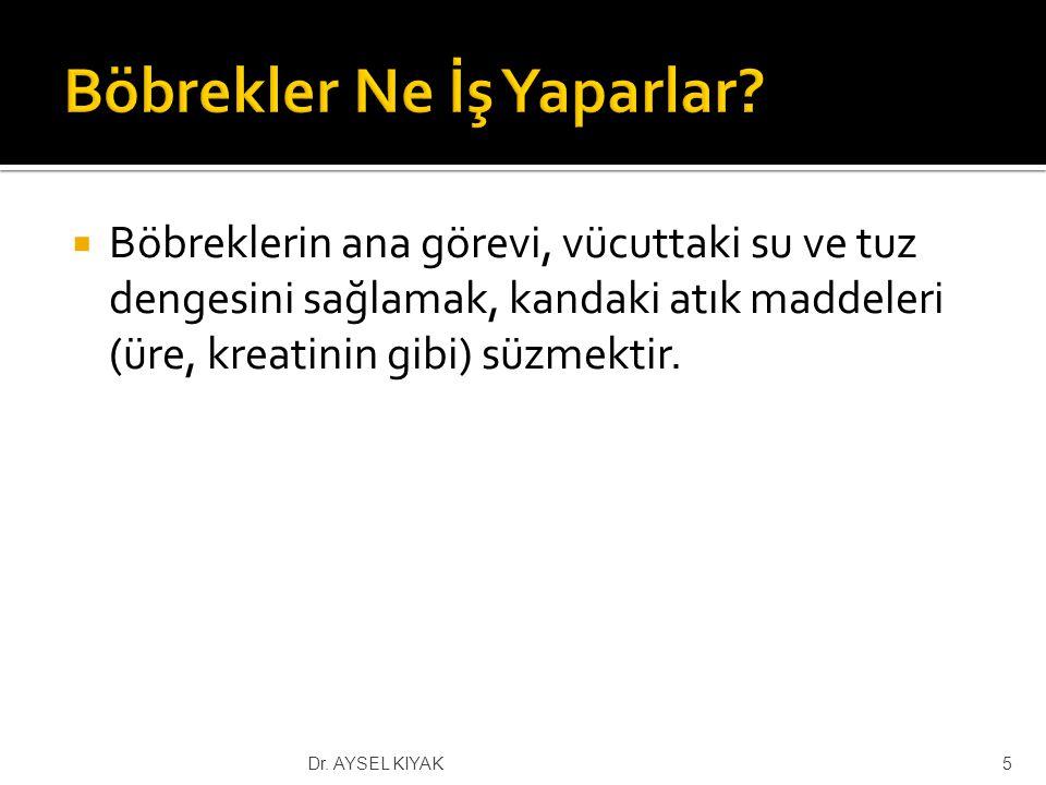 S.epidermidis S.aureus Pseudomonas 36Dr. AYSEL KIYAK