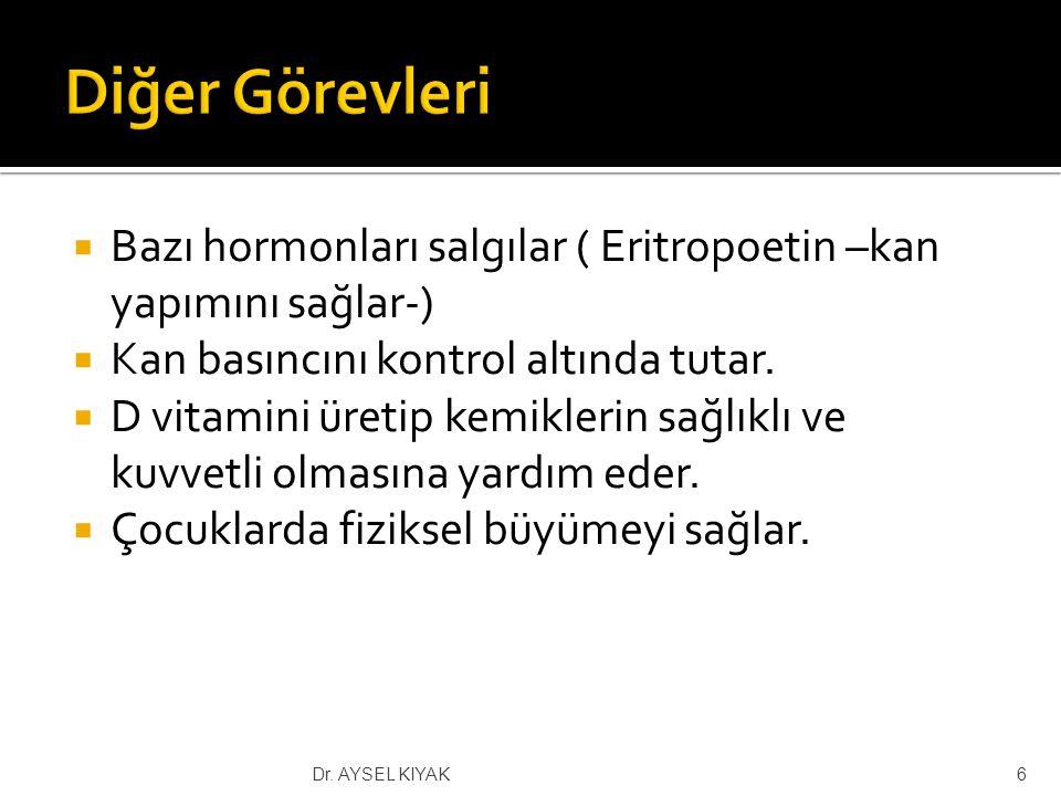  Türkiye'de 35.000 diyaliz hastası bulunmaktadır.