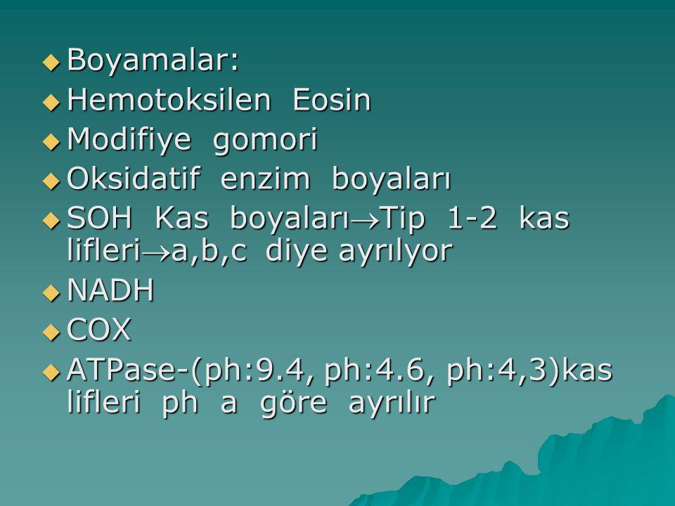  KAS BİOPSİSİNDE BAKILANLAR  1.Lif çaplarında farklılıklar ;yuvarlak konturlu atrofik lifler, hipertrofik lifler  2.İnternal çekirdek sayısı  3.Kas lifi nekrozu,fagositoz  4.Lif bölünmesi (Duchenlerde ensık görülür, hipertrofiye olur, lif ortadan bölünür.)  5.Endomysial bağ doku   6.Enflamasyon olması