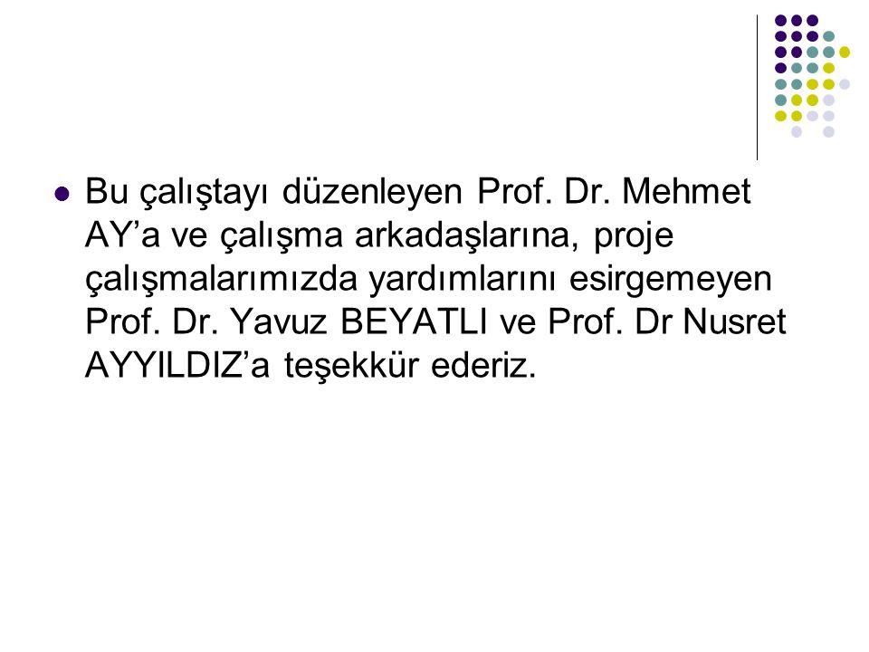 Bu çalıştayı düzenleyen Prof. Dr. Mehmet AY'a ve çalışma arkadaşlarına, proje çalışmalarımızda yardımlarını esirgemeyen Prof. Dr. Yavuz BEYATLI ve Pro