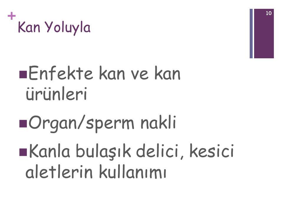 + 10 Kan Yoluyla Enfekte kan ve kan ürünleri Organ/sperm nakli Kanla bulaşık delici, kesici aletlerin kullanımı