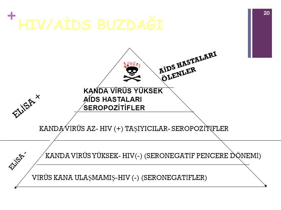 + 20 HIV/AİDS BUZDAĞI V İ RÜS KANA ULA Ş MAMI Ş -HIV (-) (SERONEGAT İ FLER) KANDA V İ RÜS YÜKSEK- HIV(-) (SERONEGAT İ F PENCERE DÖNEM İ ) KANDA V İ RÜ