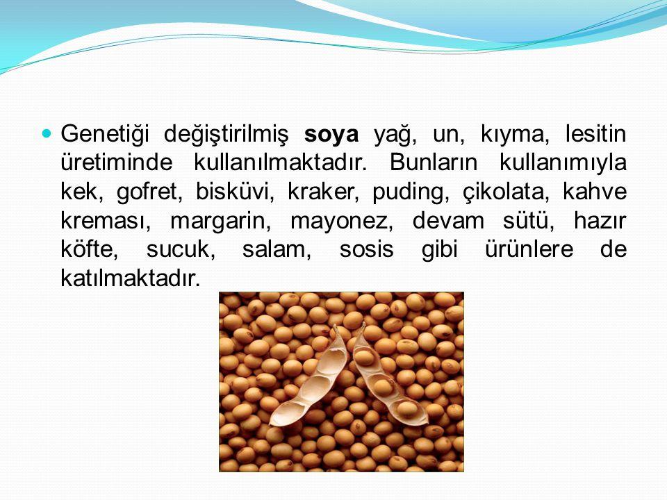 Genetiği değiştirilmiş soya yağ, un, kıyma, lesitin üretiminde kullanılmaktadır. Bunların kullanımıyla kek, gofret, bisküvi, kraker, puding, çikolata,