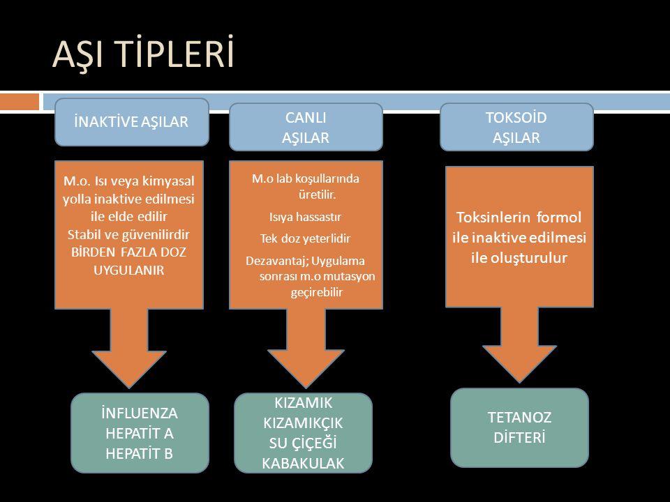 Difteri-Tetanoz-Boğmaca Aşısı