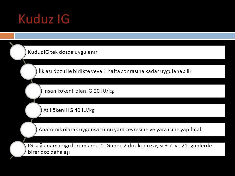 Kuduz IG Kuduz aşısı