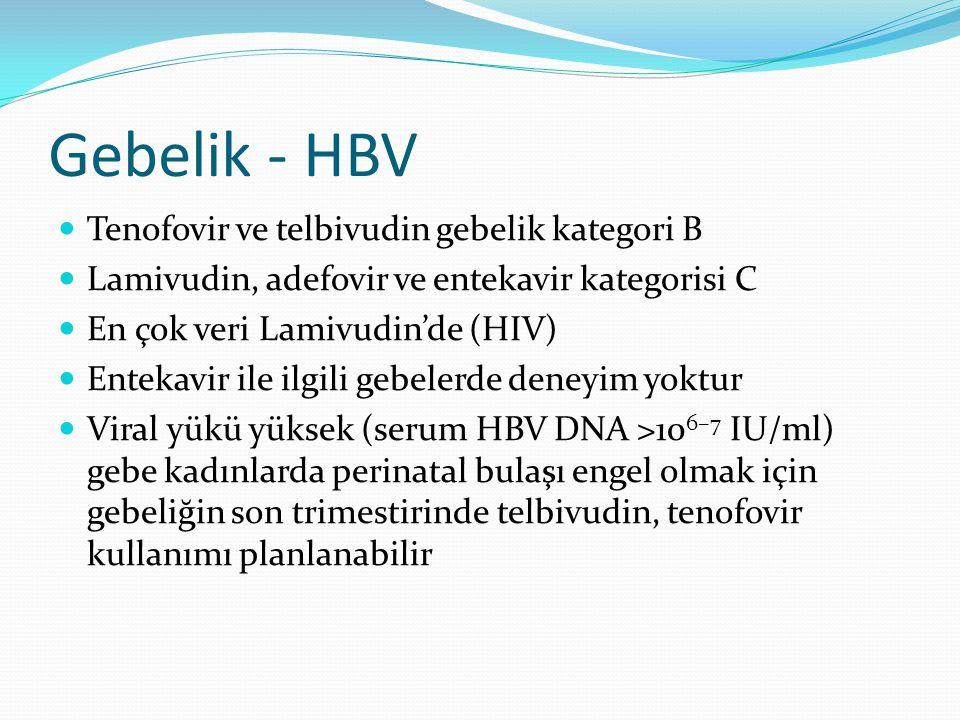 Gebelik - HBV Tenofovir ve telbivudin gebelik kategori B Lamivudin, adefovir ve entekavir kategorisi C En çok veri Lamivudin'de (HIV) Entekavir ile il