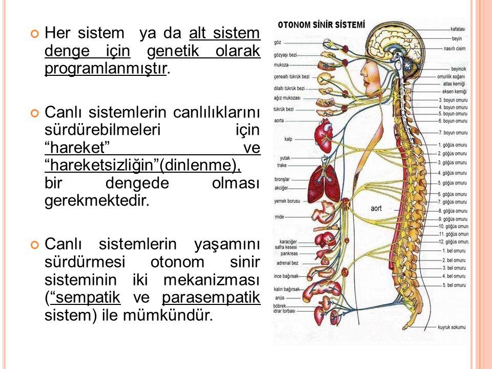 """Her sistem ya da alt sistem denge için genetik olarak programlanmıştır. Canlı sistemlerin canlılıklarını sürdürebilmeleri için """"hareket"""" ve """"hareketsi"""