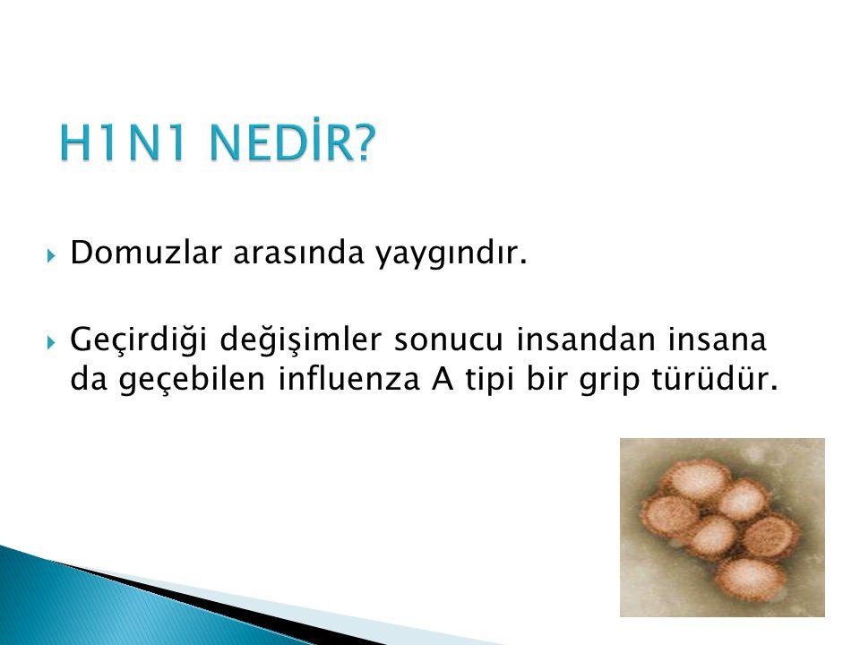  Hastalığın ilk 4-5 gününde alınan boğaz sürüntüsü, burun akıntısı, balgam gibi örneklerden virüs tespiti yapılır.