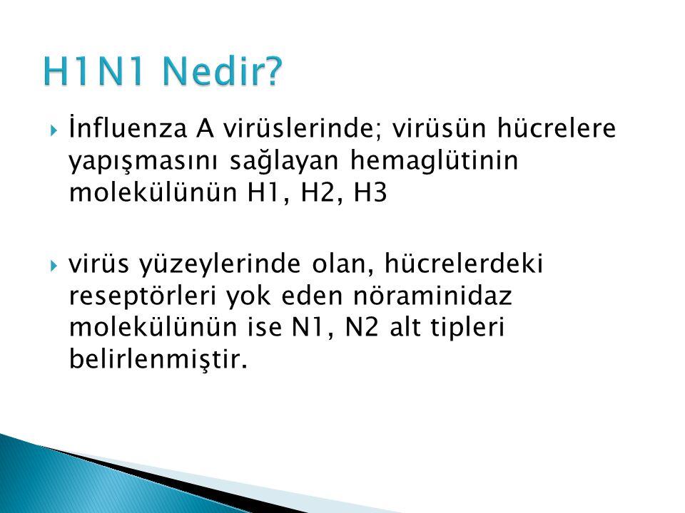  İnfluenza A tipi insan, domuz, kuş ve at gibi hayvanlarda,  influenza B sadece insanda,  İnfluenza C virüsü ise insan ve domuzlarda hastalığa sebep olmaktadır.