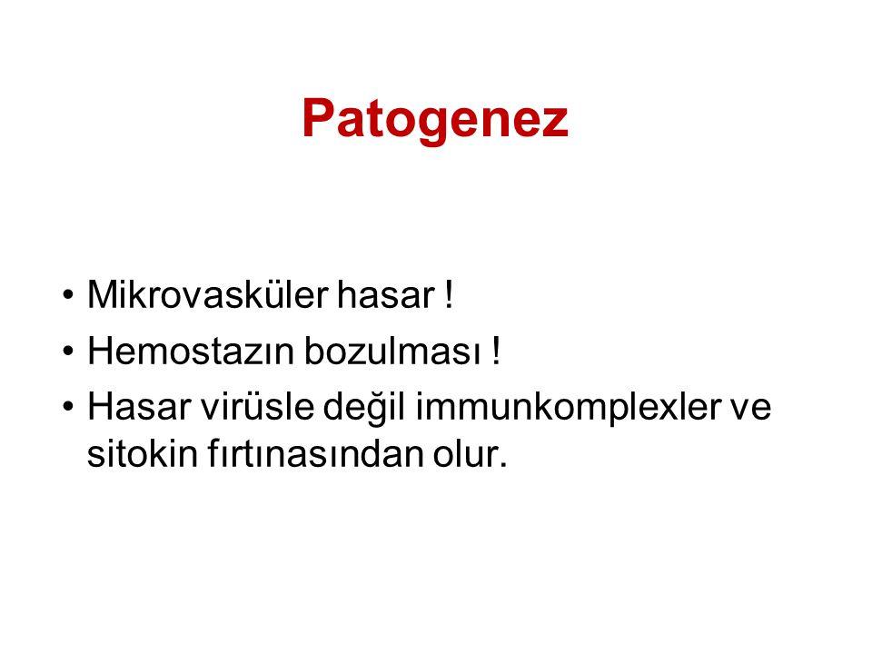 Patogenez Mikrovasküler hasar .Hemostazın bozulması .