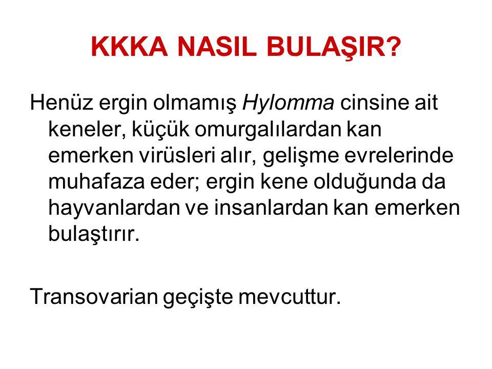 KKKA NASIL BULAŞIR.