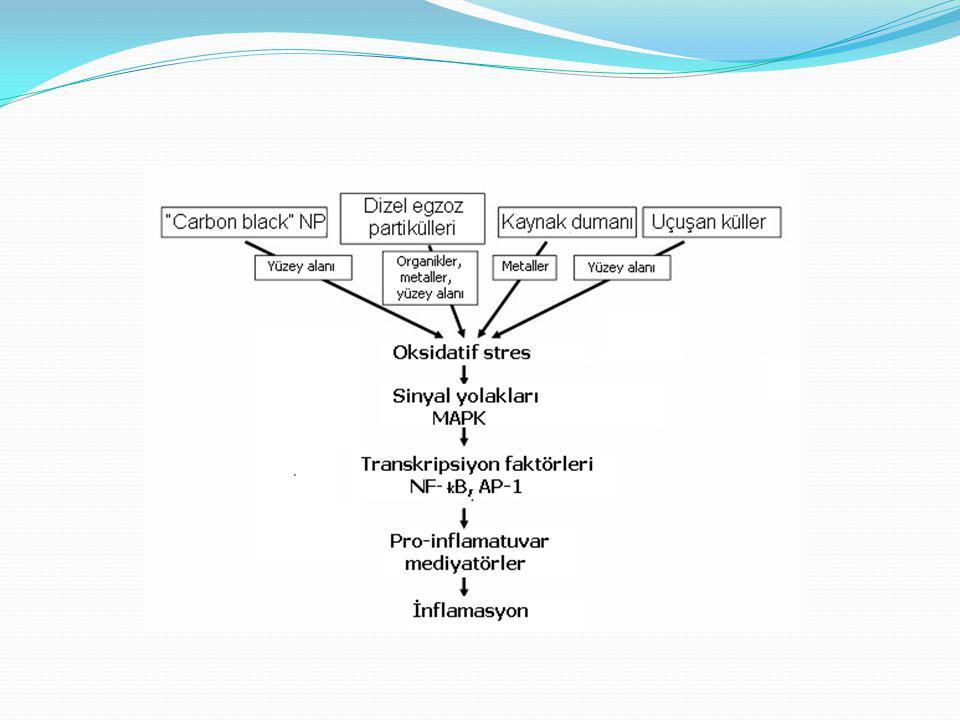 BIOMARKER National Institue of Health (NIH) Tanımı: Normal sürecin, patolojik sürecin veya tedaviye yanıt şeklinde farmakolojik cevabın bir göstergesi olarak objektif ölçülen ve değerlendirilen bir özelliktir.