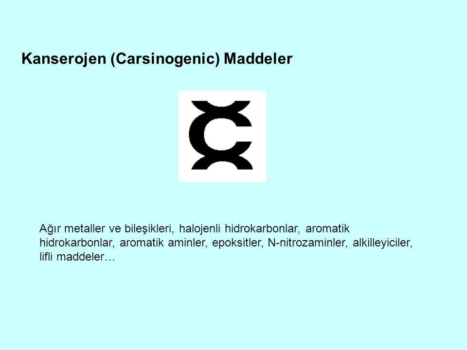 Kanserojen (Carsinogenic) Maddeler Ağır metaller ve bileşikleri, halojenli hidrokarbonlar, aromatik hidrokarbonlar, aromatik aminler, epoksitler, N-ni