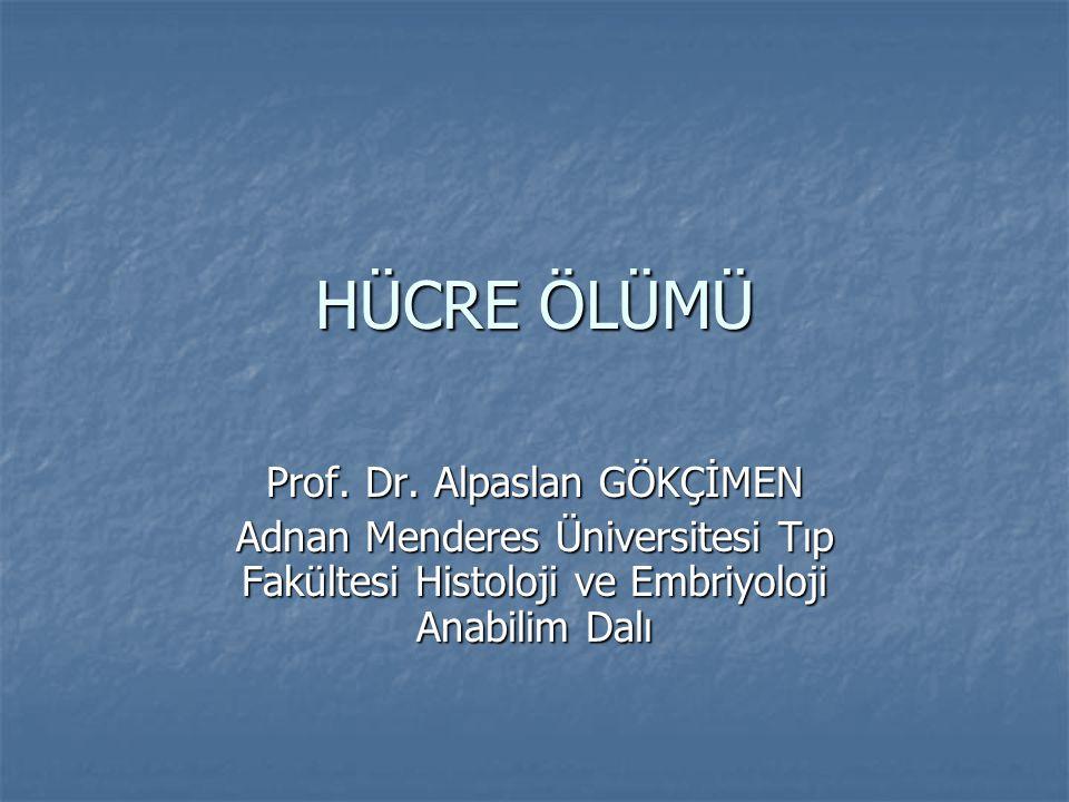 HÜCRE ÖLÜMÜ Prof. Dr. Alpaslan GÖKÇİMEN Adnan Menderes Üniversitesi Tıp Fakültesi Histoloji ve Embriyoloji Anabilim Dalı