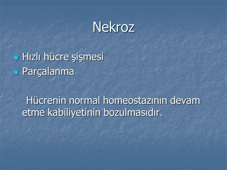Nekroz Hızlı hücre şişmesi Hızlı hücre şişmesi Parçalanma Parçalanma Hücrenin normal homeostazının devam etme kabiliyetinin bozulmasıdır. Hücrenin nor